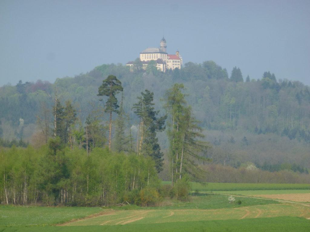 Blick auf Schloss Baldern (80)