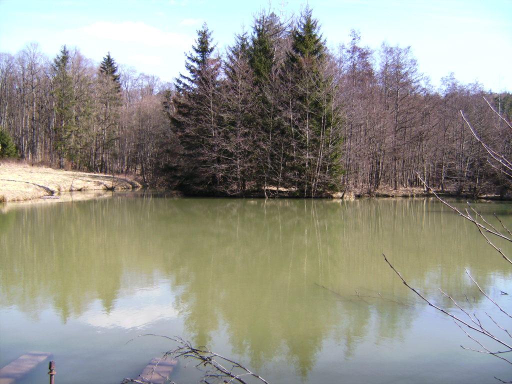 Das Rindenhäusle mit See