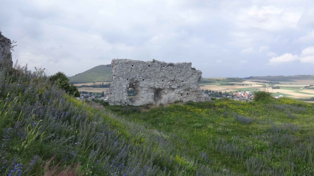 Ruine Flochberg (19)