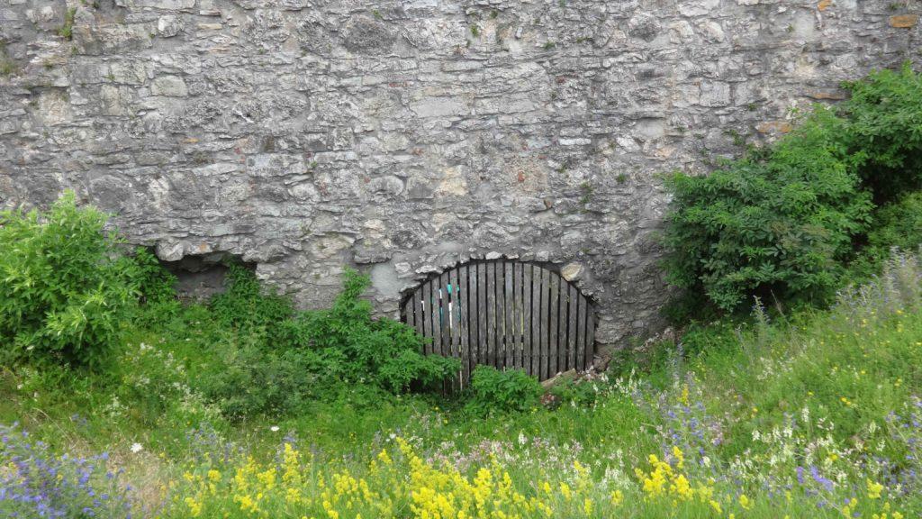 Ruine Flochberg (31)