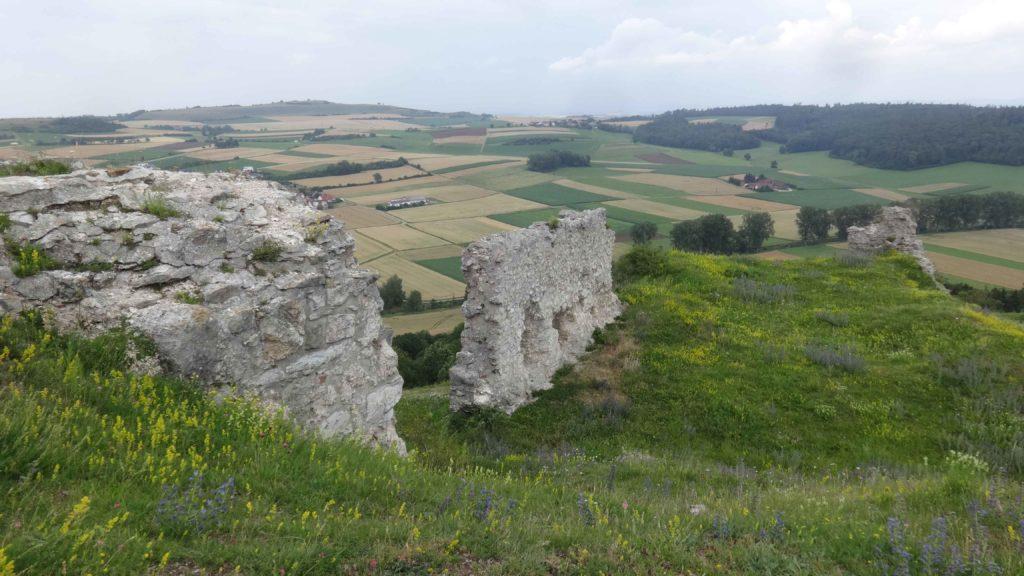 Ruine Flochberg (33)
